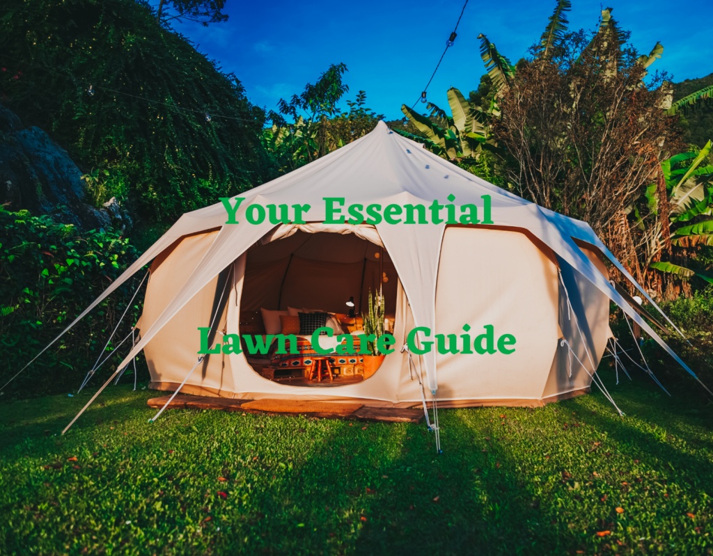 Your Essential Spring Lawn Care Guide